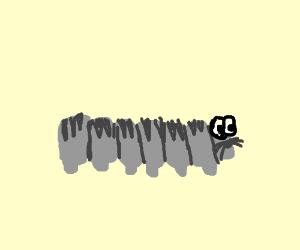 A Rat Thats a Catapiller