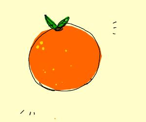 a weird looking orange