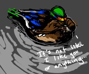 Bashful duck