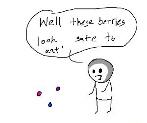 Multicoloured berries