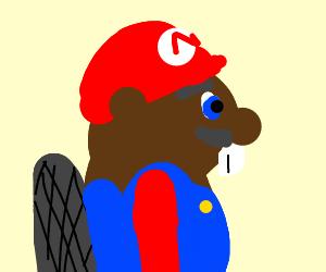 Mario is a beaver?